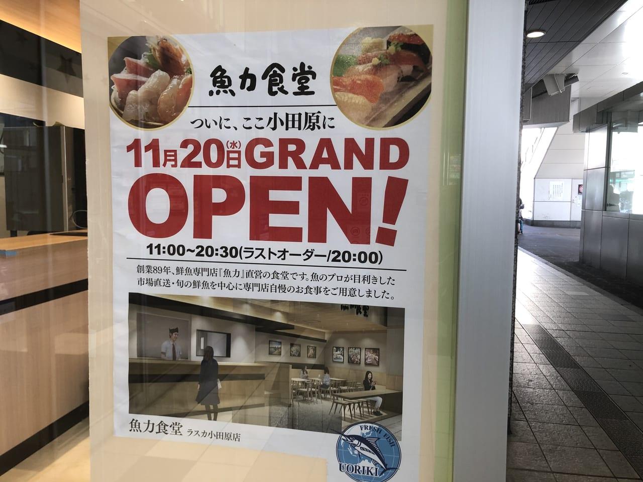 ラスカ小田原魚力食堂
