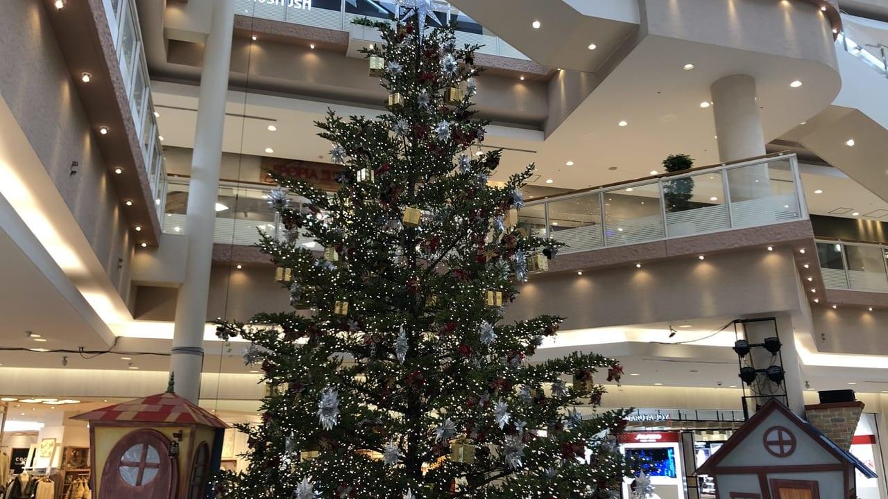 ダイナシティクリスマスツリー