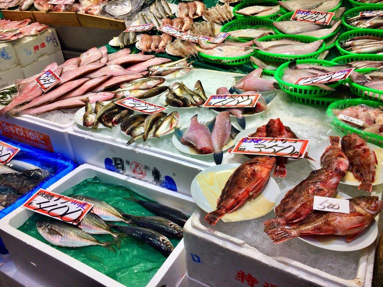 小田原水産市場